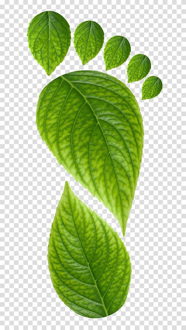 Environmentally friendly Logo Ecotourism Sustainability.