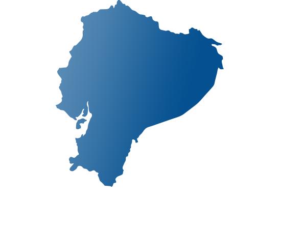 PMI Ecuador.