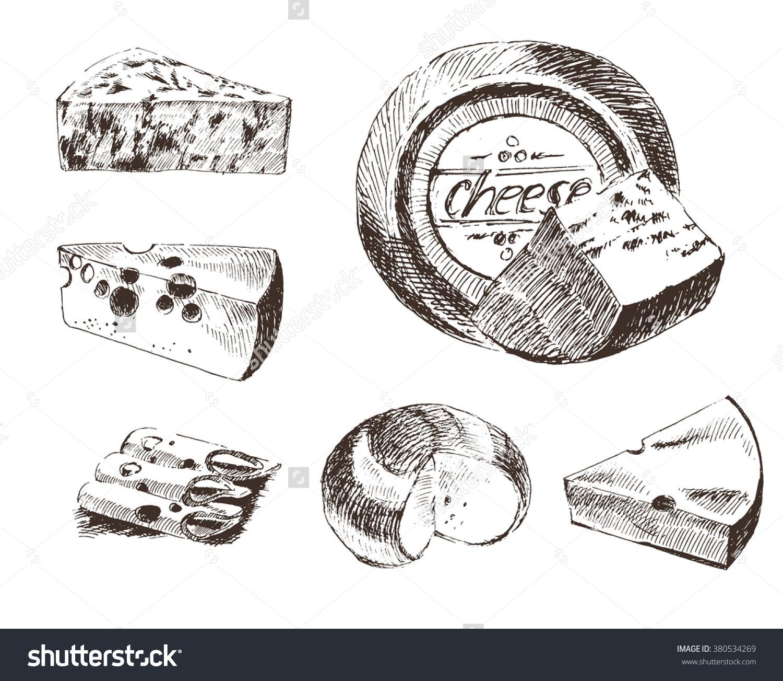Vector Cheese Sketch Drawing Gouda Blue Stock Vector 380534269.