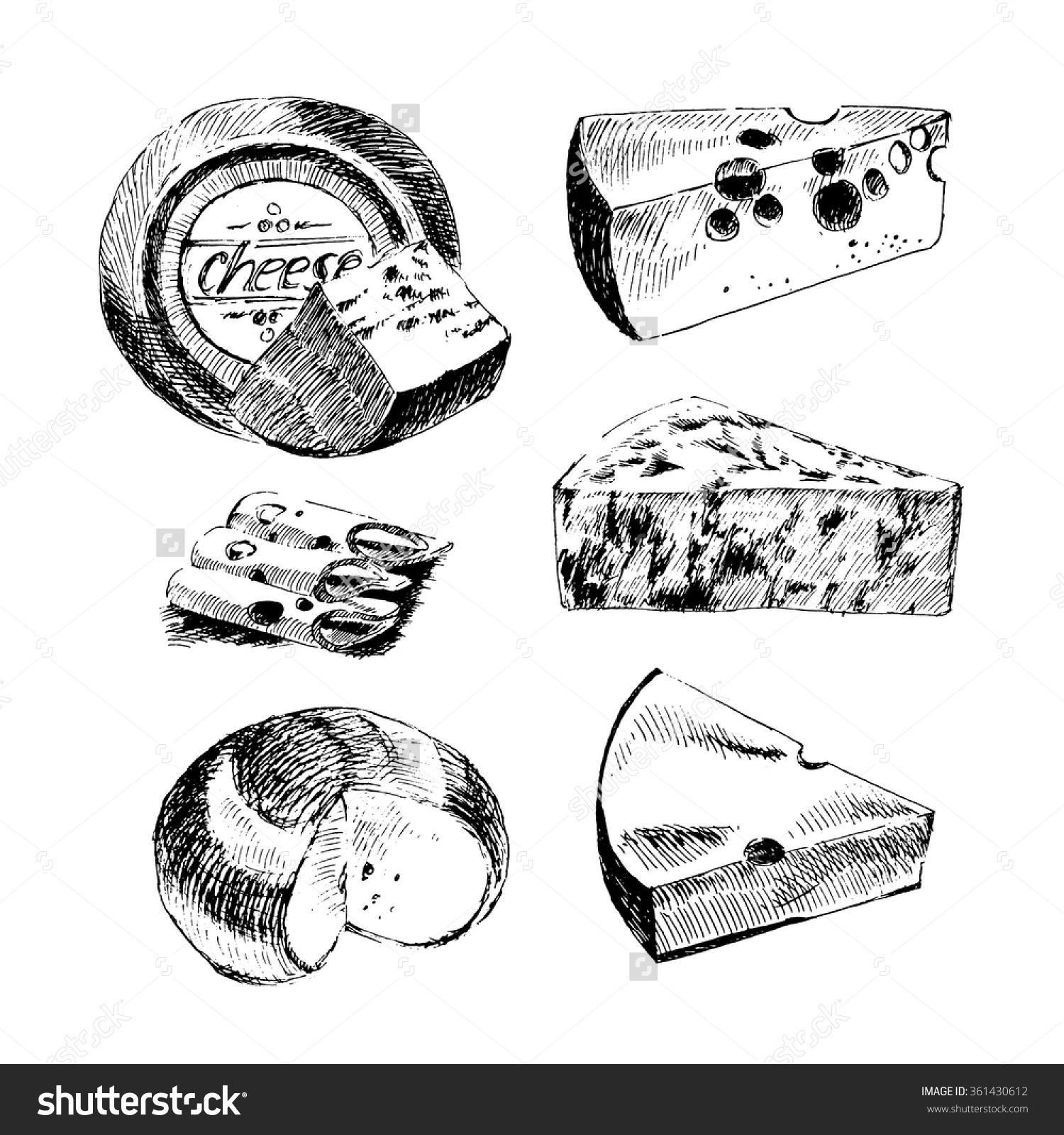 Vector Hand Drawn Cheese Set Vintage Stock Vector 361430612.
