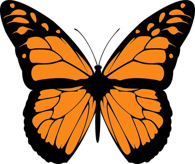 Free vector graphic: Animal, Butterfly, Colorful, Flight.