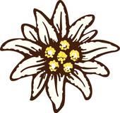 Edelweiss flower symbol alpinism alps germany logo Clipart.