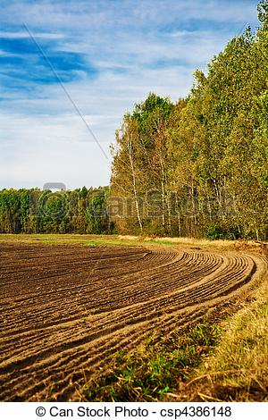 Pictures of The ploughed field at edge of a forest csp4386148.