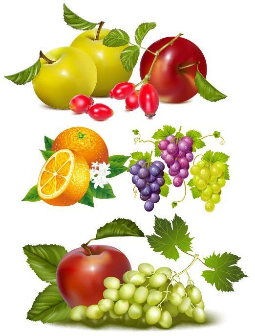 1000+ images about garden tools, vegatables, fruit on Pinterest.