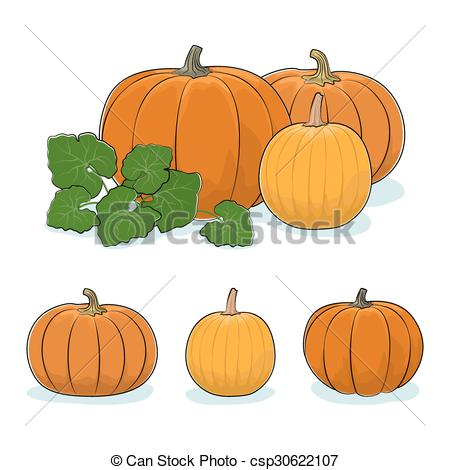 Vector Clipart of Pumpkin Vegetable, Edible Fruit.