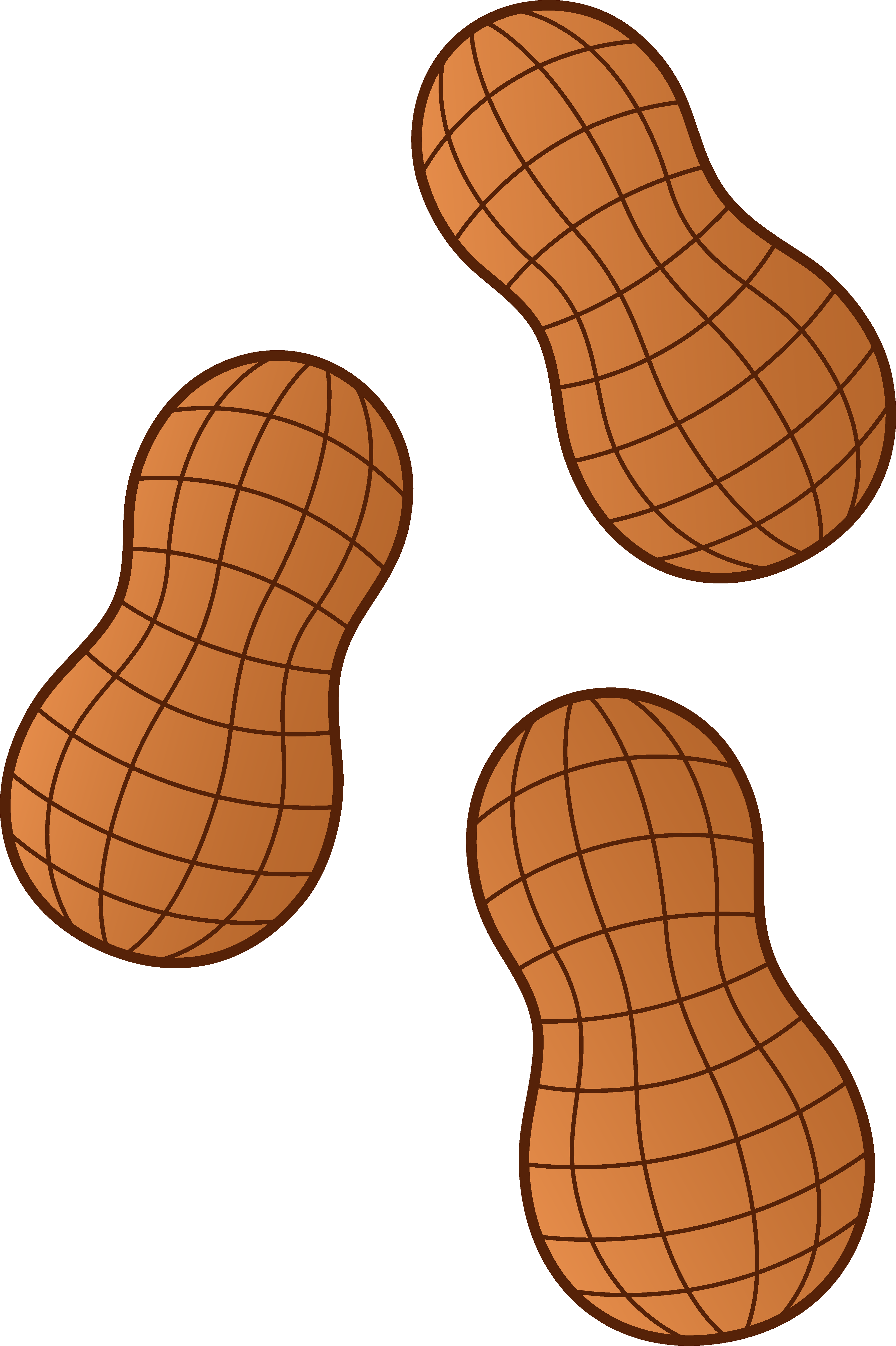 Edible nuts clipart.