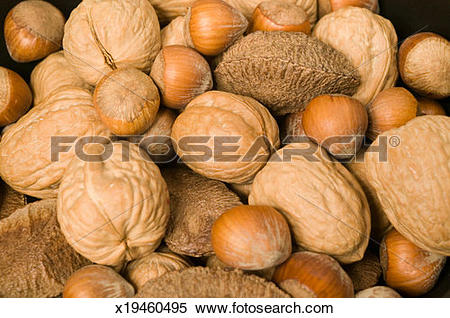 Stock Image of Mixed edible nuts in shells close.