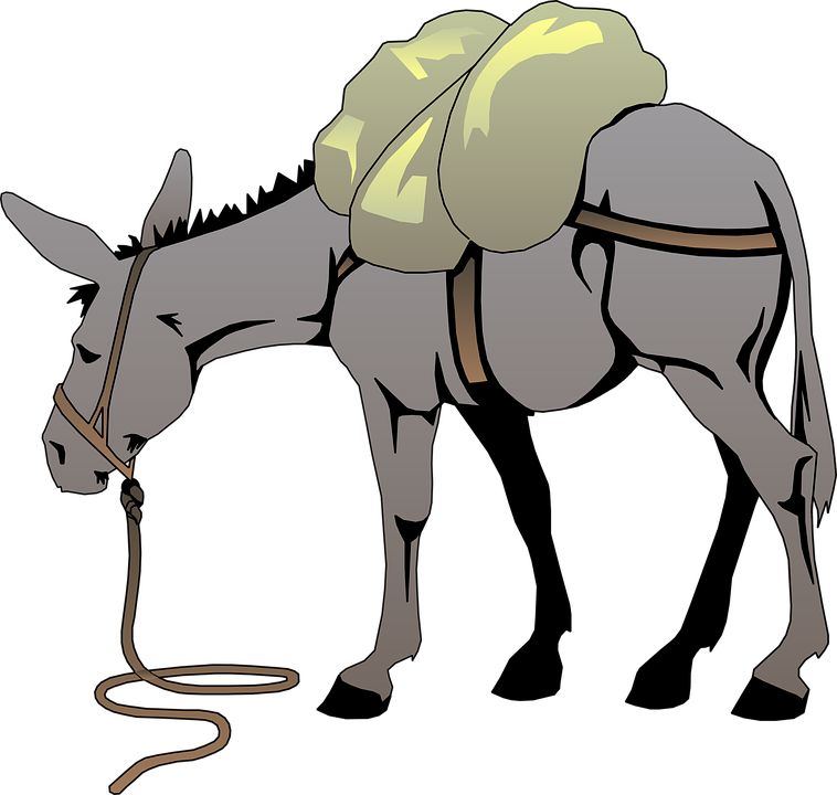 Free vector graphic: Donkey, Gray, Load, Animal, Tail.