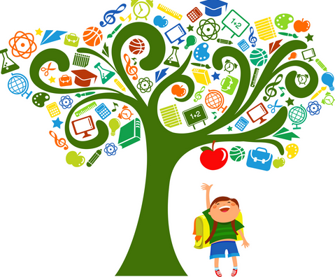 Learning Tree Png & Free Learning Tree.png Transparent Images #11842.