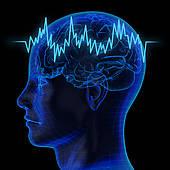 Drawing of eeg brainwaves and x.
