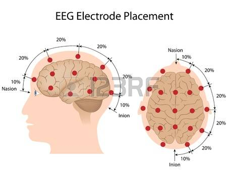 146 Eeg Stock Vector Illustration And Royalty Free Eeg Clipart.