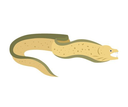 172 Moray Eel Stock Vector Illustration And Royalty Free Moray Eel.