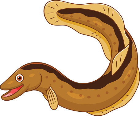 Eel Clip Art, Vector Images & Illustrations.