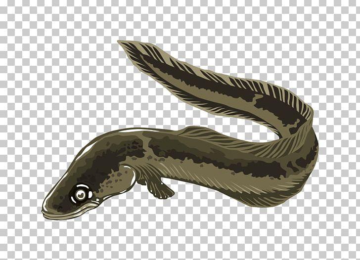 Electric Eel PNG, Clipart, Amphibian, Cartoon, Clip Art, Download.