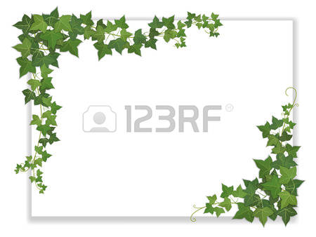 5,618 Ivies Cliparts, Stock Vector And Royalty Free Ivies.
