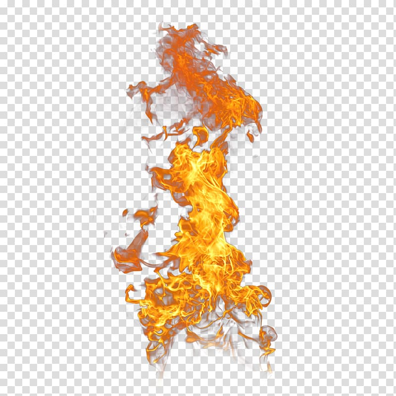 Flame wall paper, Flame effect transparent background PNG.