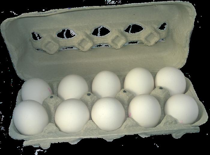 Egg Carton Png Vector, Clipart, PSD.