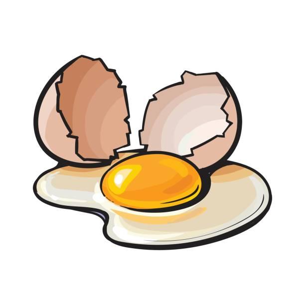 Broken Egg Clipart.