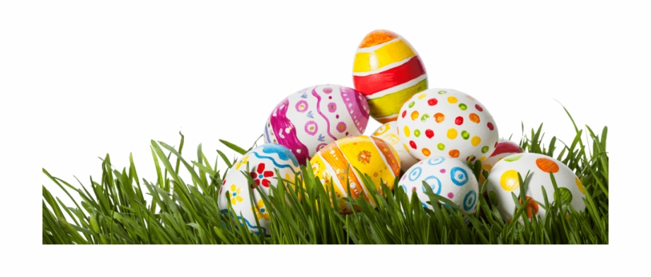 Easter Grass Eggs Png Photo.