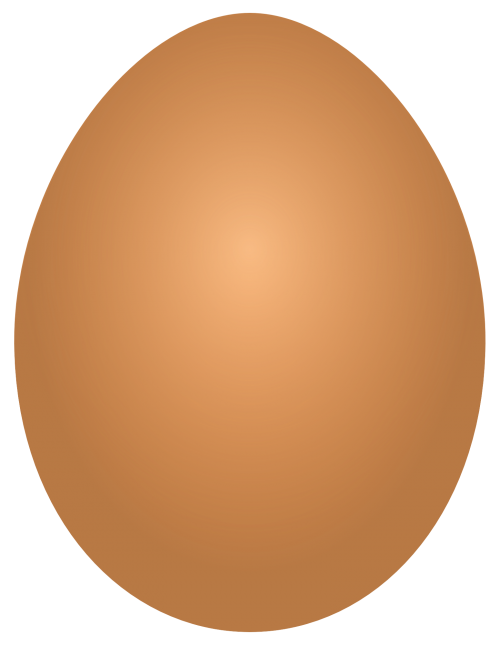 Egg PNG Vector Transparent Image.