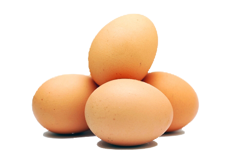 Egg PNG Images Transparent Free Download.