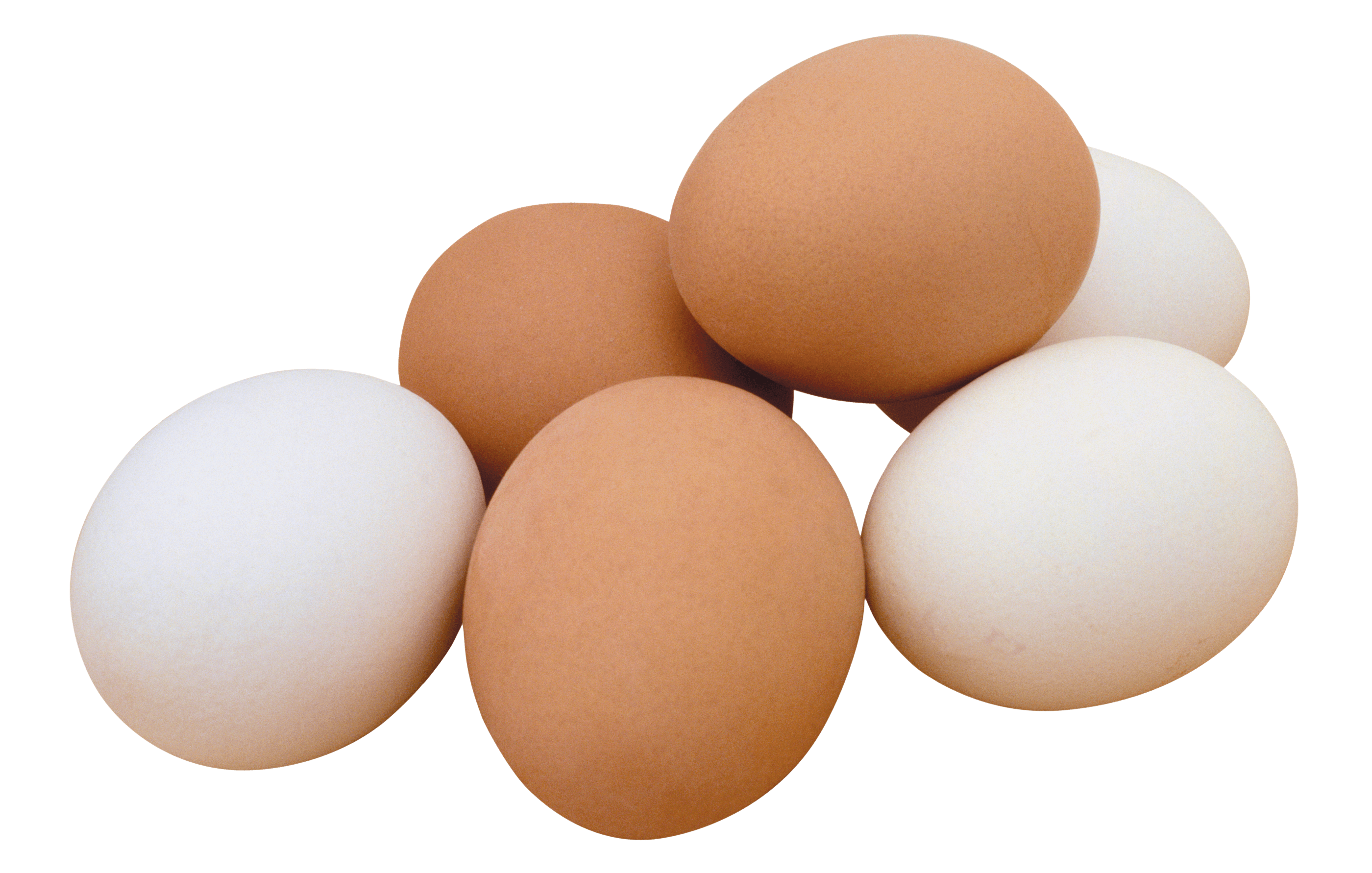 Egg transparent PNG.
