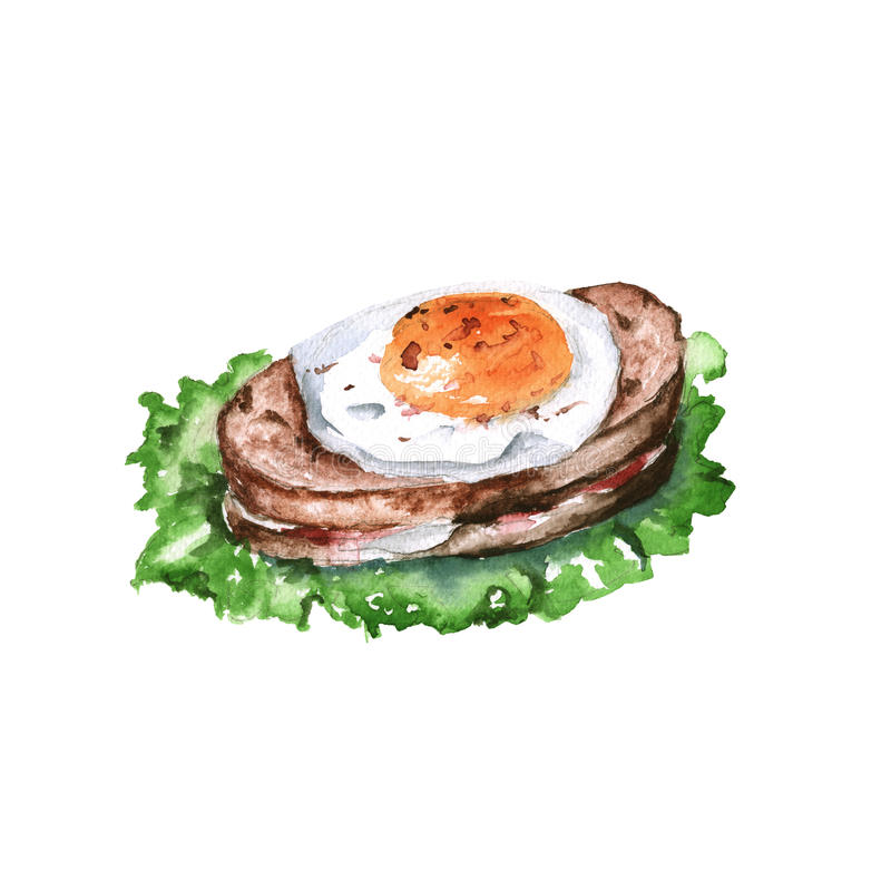 Egg Salad Stock Illustrations.