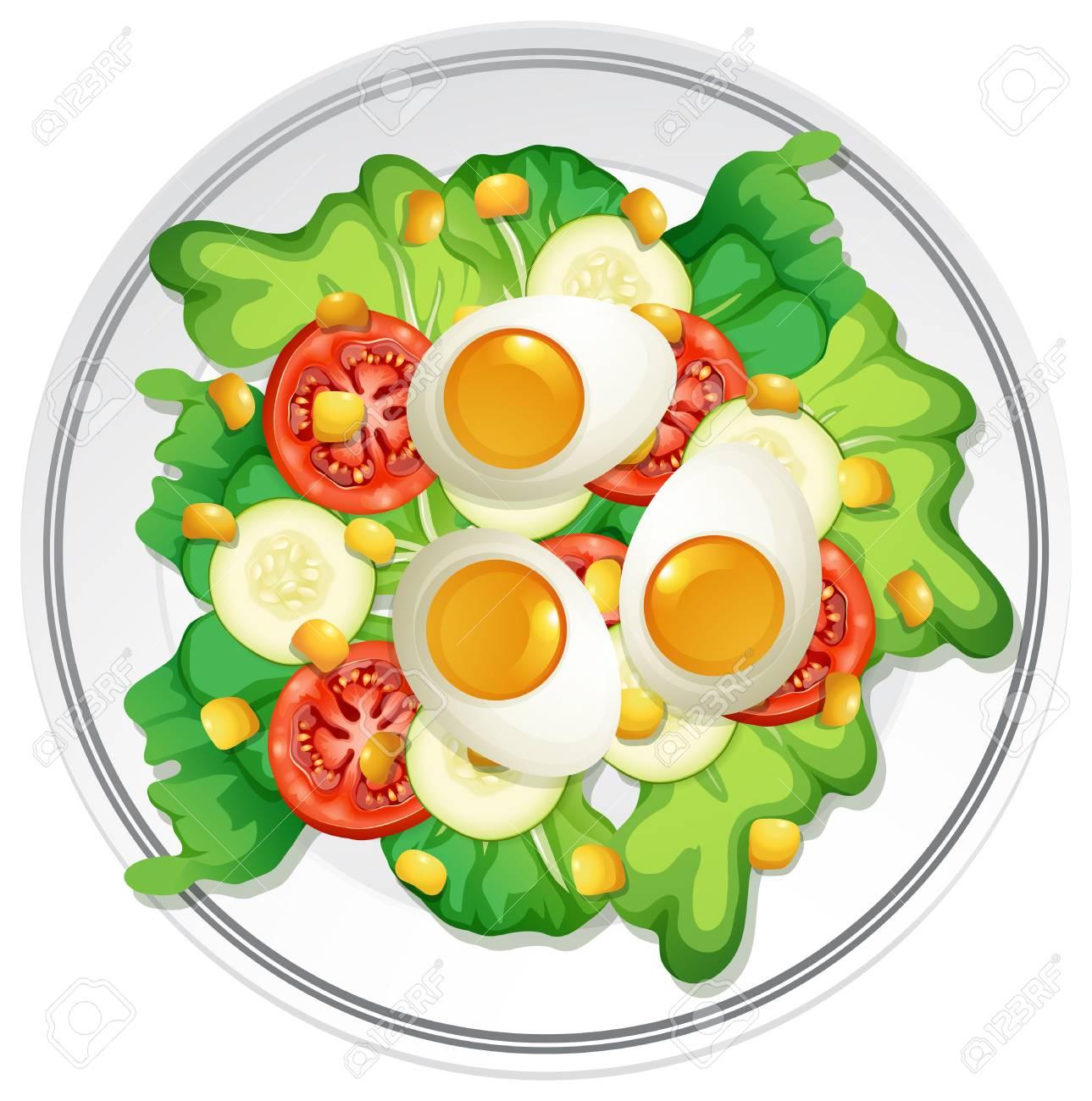 A Plate of Egg Salad illustration.