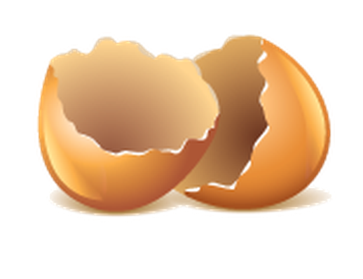 Egg shells clipart.