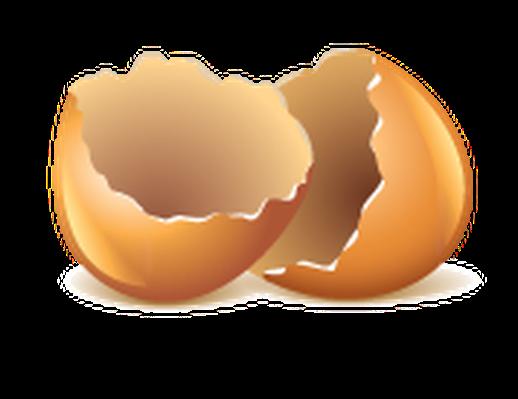 Egg shells clipart.