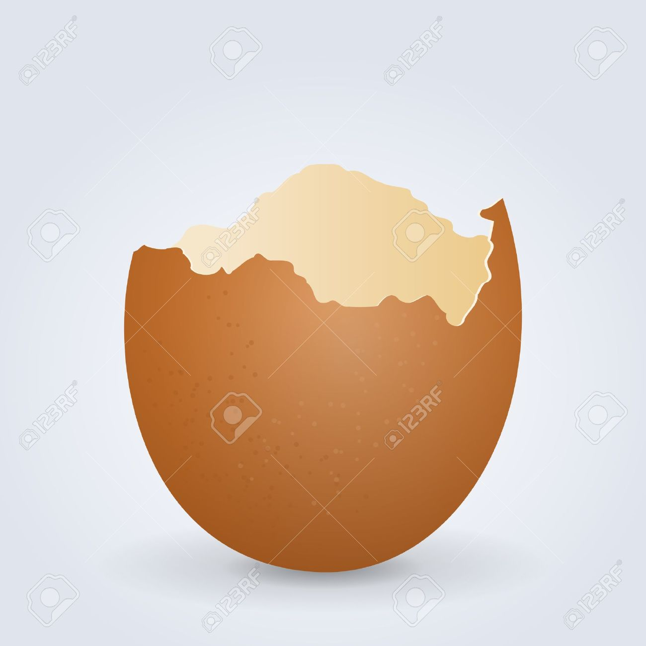 4,102 Eggshell Stock Vector Illustration And Royalty Free Eggshell.