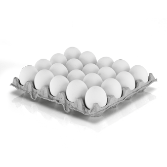 Egg tray png 6 » PNG Image.