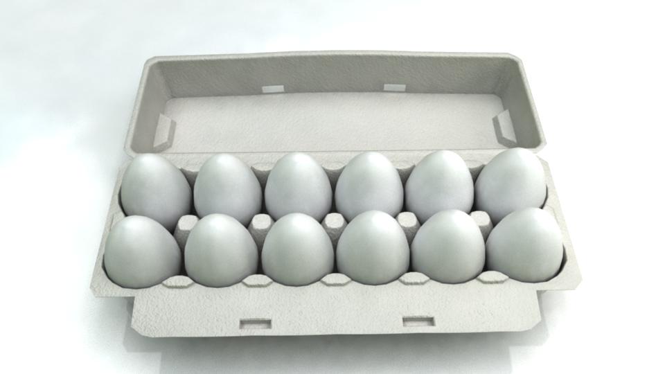 Dozen Eggs Tray 3D Model in Miscellaneous 3DExport.