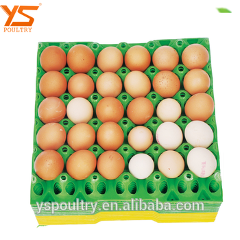 Used Plastic Recycling Commercial Egg Tray Yellow Egg Tray.