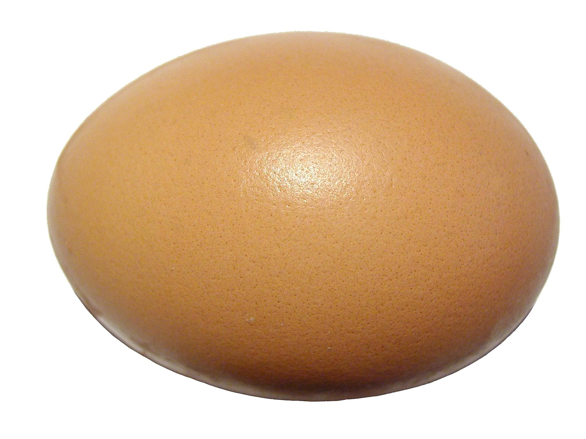 Egg clipart no background.