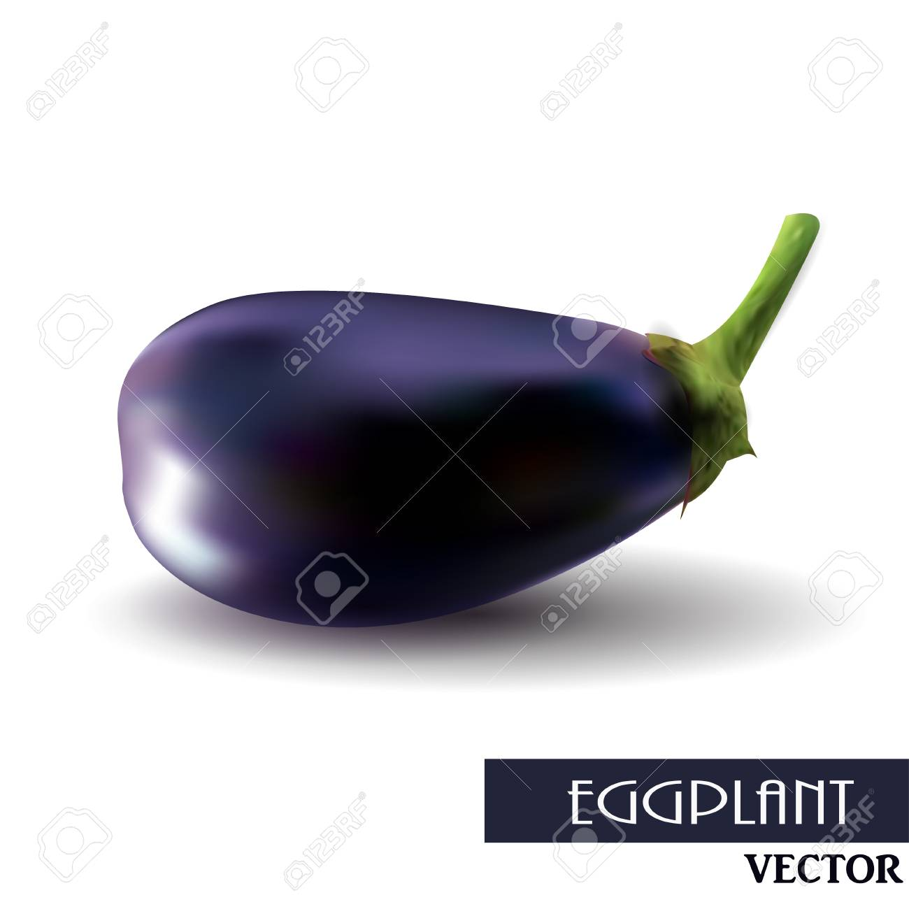 One fresh eggplant over white background clip.