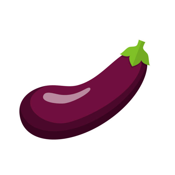Best Eggplant Illustrations, Royalty.