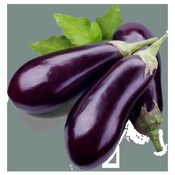 Eggplant PNG Transparent Images.