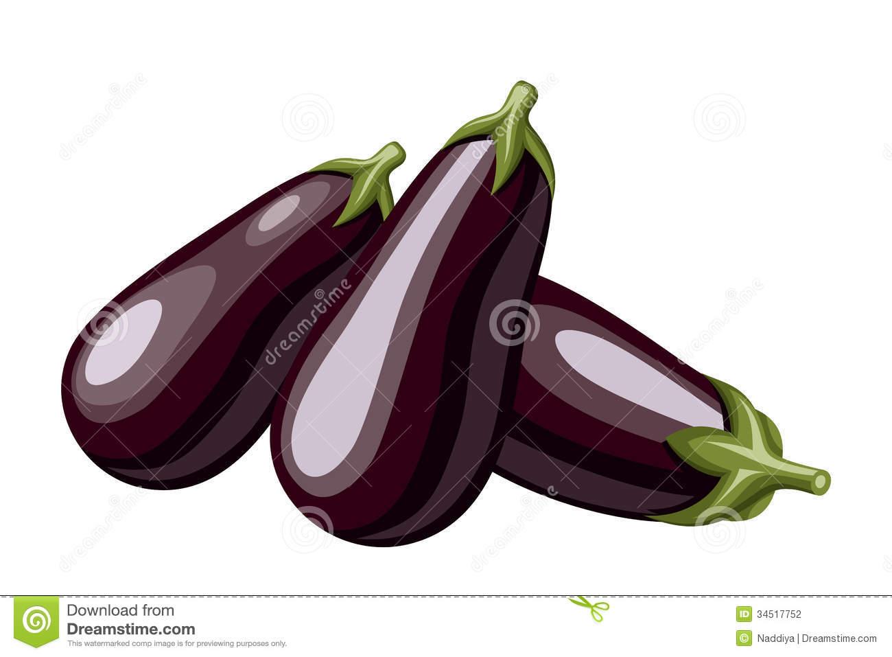 Eggplants Stock Illustrations.