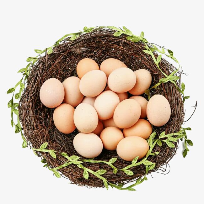 Inside The Nest Egg, Egg Clipart, Egg, E #84911.