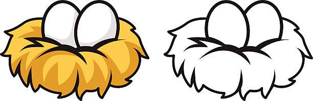 Best Bird's Nest Illustrations, Royalty.