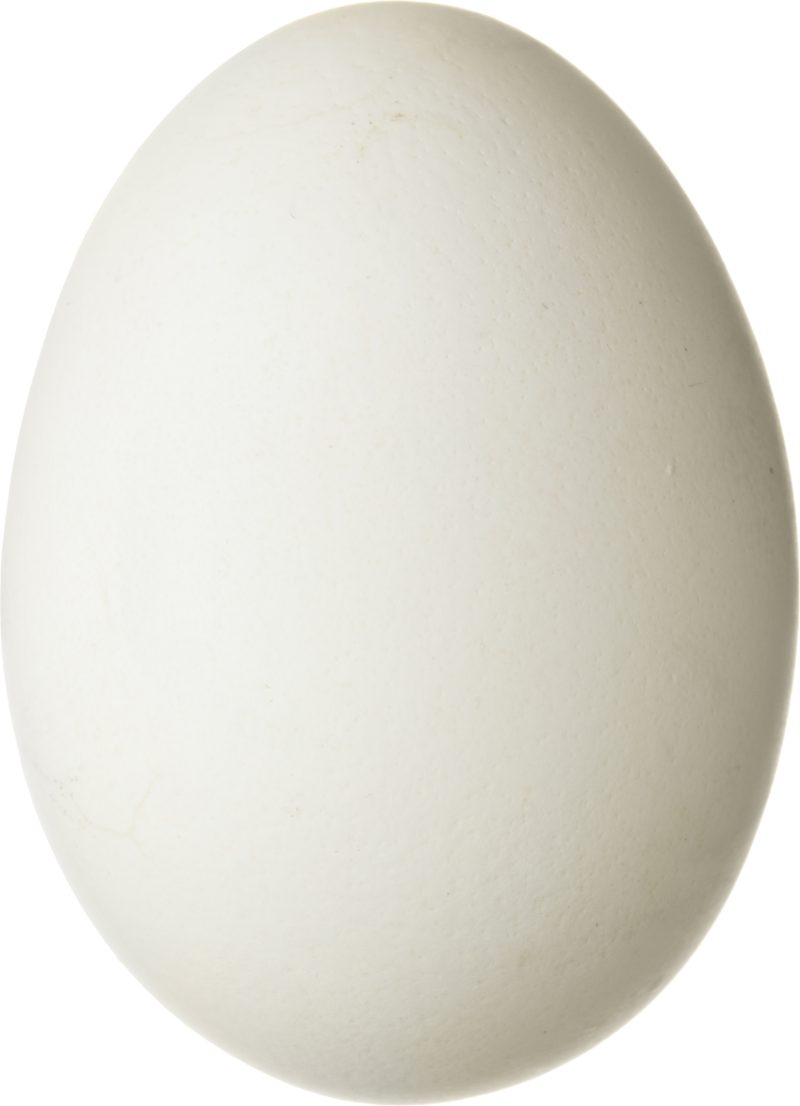 Download Free png Egg PNG image, Download PNG image with transparent.