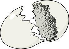 Broken Eggshell Stock Illustrations.