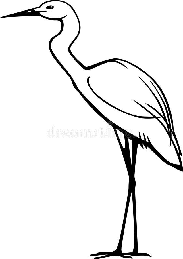 Snowy Egret Stock Illustrations.