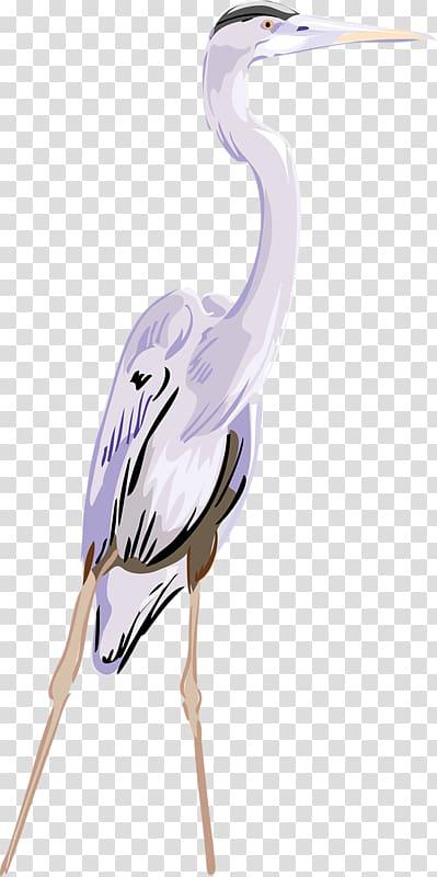 Crane Great egret , Cartoon crane transparent background PNG clipart.