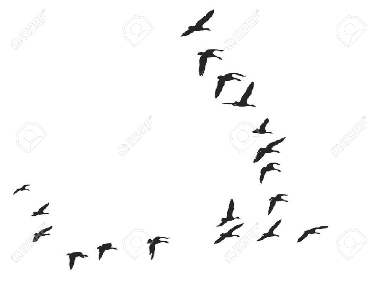 Skein Of Geese Royalty Free Cliparts, Vectors, And Stock.
