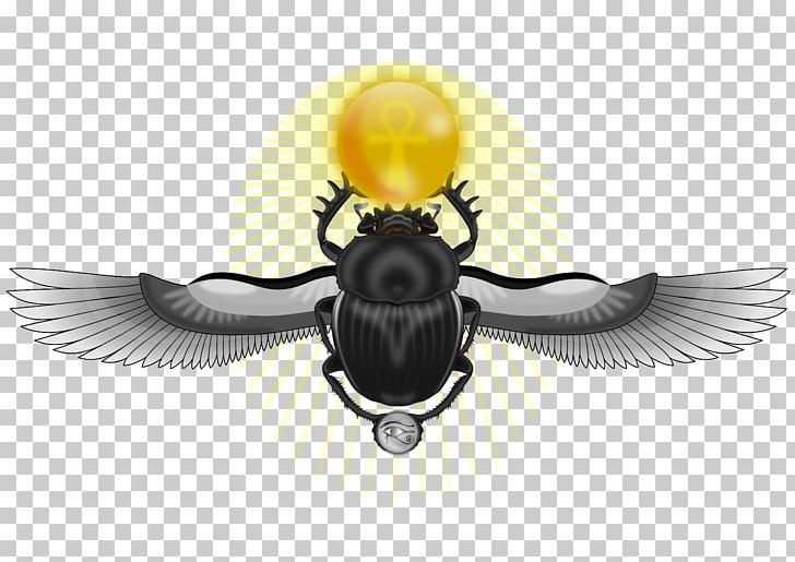 Beetle Ancient Egypt Eye of Horus Scarab, beetle PNG clipart.
