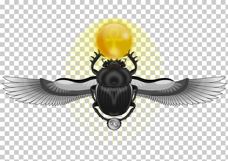 Ancient Egypt Beetle Scarab Eye of Horus Ankh, beetle PNG.