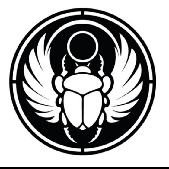 Scarab beetle for chasing design?.