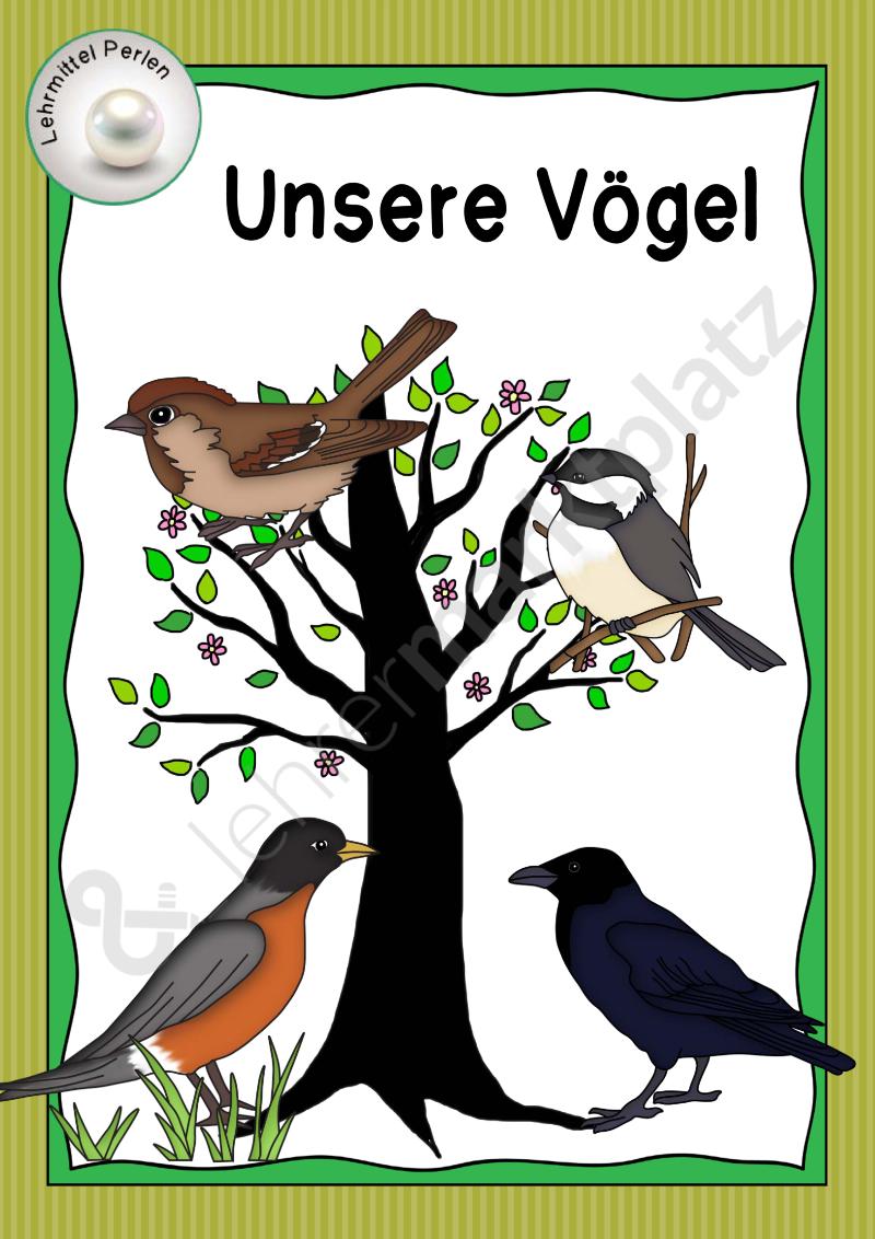 1000+ ideas about Heimische Vögel on Pinterest.
